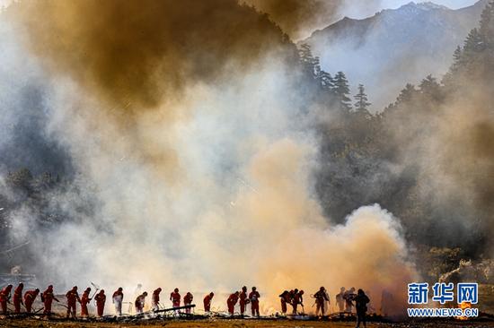 森林消防指战员和地方扑火队协同灭火。新华网发 (王博悟 摄)