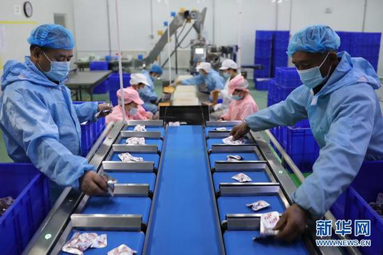 11月17日,在武威森泰食品有限公司,工作人员在分拣牛肉干产品。新华社记者 杜哲宇 摄