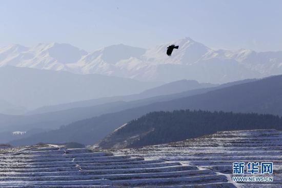 12月7日拍摄的甘肃天祝藏族自治县大红沟镇的梯田雪景(无人机照片)。新华社发(姜爱平 摄)