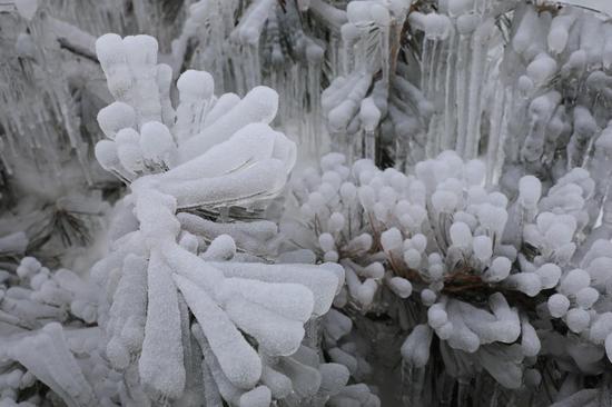 这是12月28日拍摄的甘肃省定西市渭源县天井峡景区景色。冬日里,甘肃省定西市渭源县冬景如画,宛如仙境。新华社记者 杜哲宇 摄