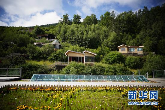 甘肃省甘南藏族自治州卓尼县博峪村一景。新华社记者邢广利 摄