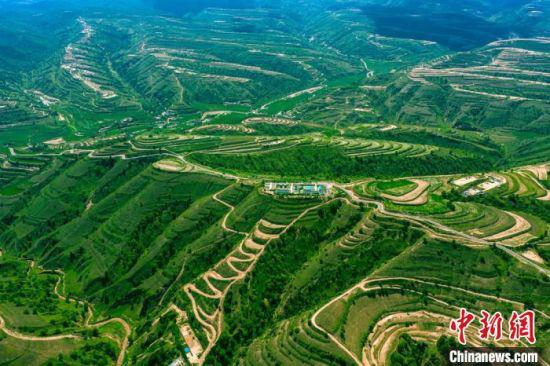 甘肃庆阳是长庆油田发祥地,也是采油二厂原油主产区。近年来,该厂持续加大环保治理投入力度,对油区井场、站点、油区道路和周围环境进行生产环境绿化,使生产区绿化率达到90%以上。(资料图) 李忠斌 摄