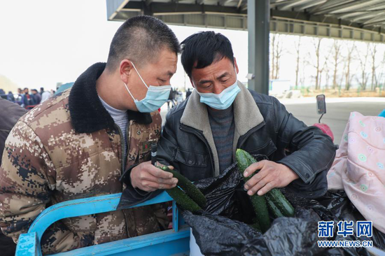 2月4日,在靖远县北湾镇新坪村农贸市场,菜贩胡荣辉(右)查看菜农种植的黄瓜。新华社记者 马希平 摄