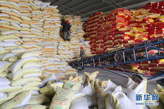 2月22日,在甘肃省定西市安定区一农资配送中心,工人搬运农资装车。新华社发(王克贤 摄)