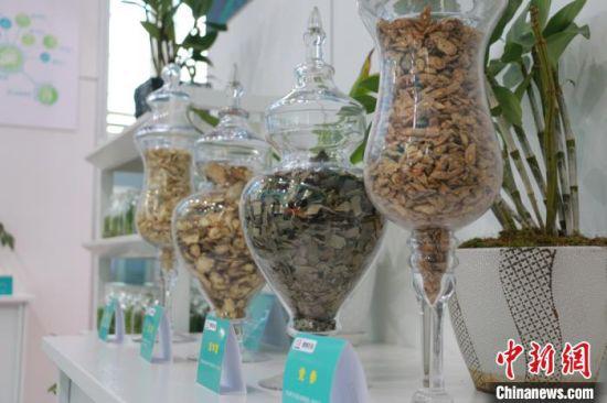 """2020年8月下旬,第三届中国(甘肃)中医药产业博览会在""""千年药乡""""定西市陇西县召开。图为中药材切片展示。(资料图) 张婧 摄"""