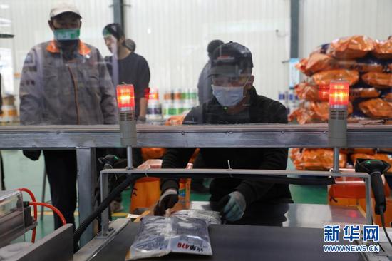 3月10日,在临泽县张掖国家级玉米种子产业园内,一家玉米种子生产企业的工人在工作中。新华社记者 张智敏 摄