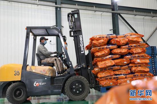 3月10日,在临泽县张掖国家级玉米种子产业园内,一家玉米种子生产企业的工人在搬运包装好的种子。新华社记者 张智敏 摄