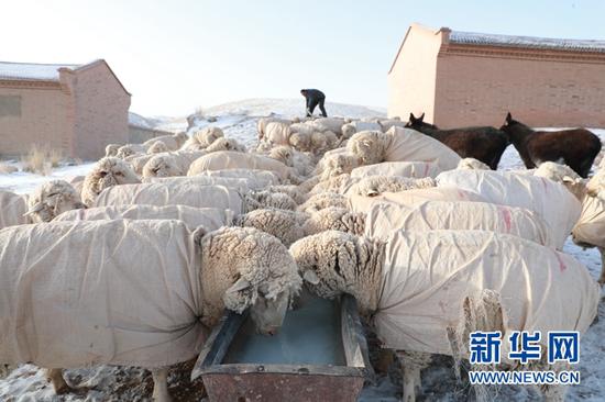 3月20日,顾正礼查看牧区一处供水点的通水情况。新华社记者 杜哲宇 摄