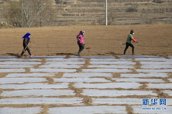 3月22日,定西市安定区团结镇高泉村农民在田间覆盖地膜。