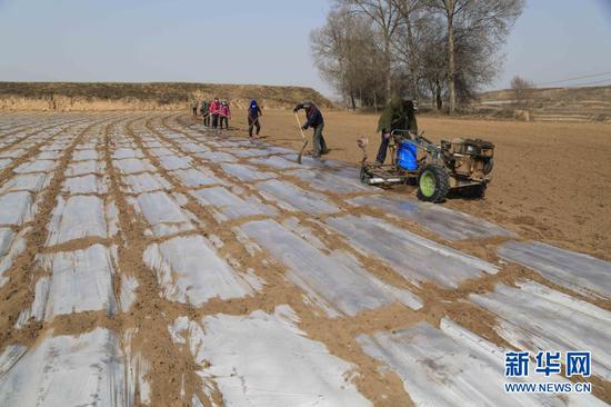3月22日,定西市安定区团结镇高泉村农民在田间覆盖地膜。新华社发(王克贤 摄)