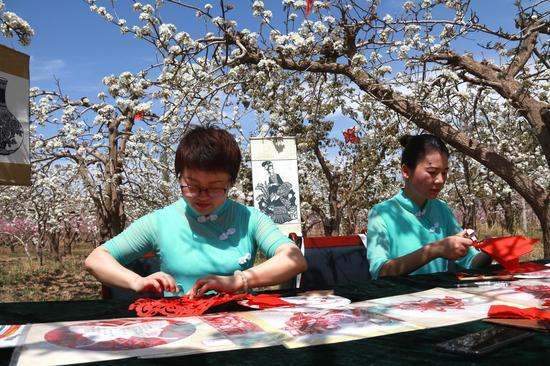 2021年4月17日,敦煌剪纸艺人在甘肃省敦煌市莫高镇泾桥村梨园中剪纸。