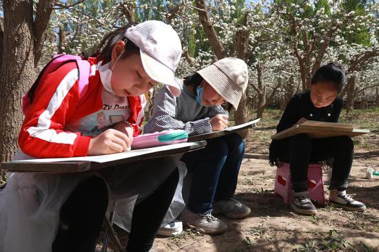 2021年4月17日,小朋友在甘肃省敦煌市莫高镇泾桥村梨园中写生。