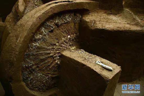 这是2008年拍摄的出土于马家塬西戎墓葬的一辆战国马车车轮、毂及其装饰和车軎。新华社发(甘肃省文物考古研究所供图)