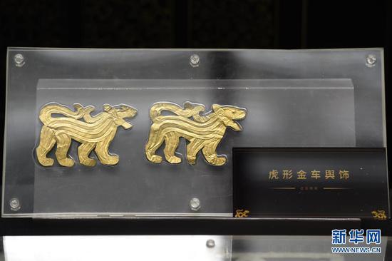 出土于马家塬西戎墓葬的虎形金车舆饰(5月18日摄)。新华社记者 范培珅 摄