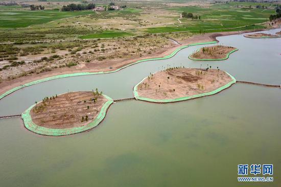 这是6月10日拍摄的临泽县临平路乡村振兴带水系连通建设现场(无人机照片)。新华社记者 范培珅 摄