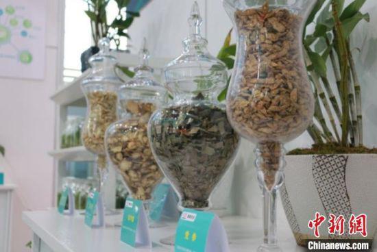 图为第三届中国(甘肃)中医药产业博览会线下展馆的药材展示。(资料图) 张婧 摄