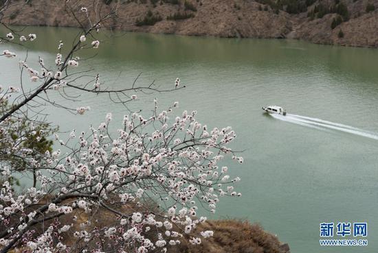 3月28日,快艇在黄河刘家峡水库内行驶。新华社发(史有东 摄)