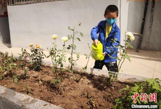 图为小男孩浇灌绿植。
