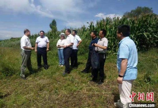 农业专家赴将台村实地调研。(资料图) 受访者供图