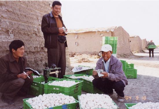 2003年,宁夏彭阳县新集乡。将双孢菇出售后,菇农露出了喜悦的笑容。