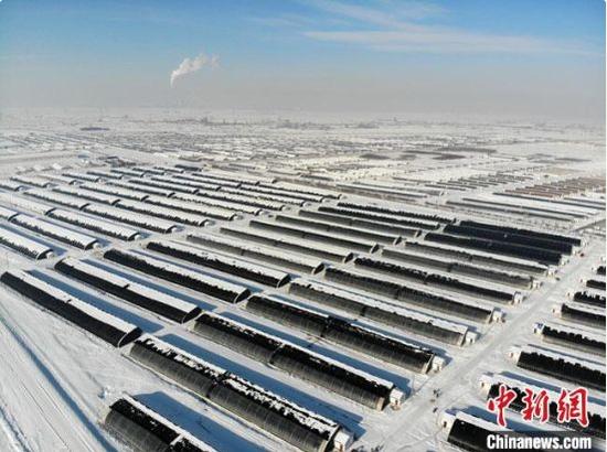 图为甘肃省酒泉市戈壁滩上规模宏大的循环农业温室大棚