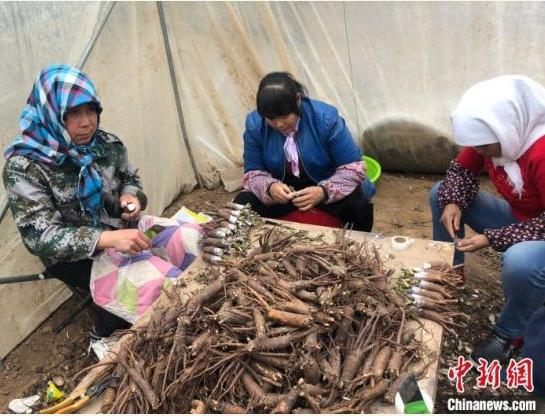 甘肃贫困山区妇女在当地扶贫车间就业增收