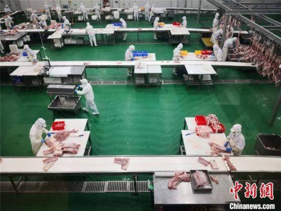 图为甘肃庆阳市环县中盛羊业发展有限公司的无菌操作间(资料图)。
