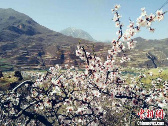 图为定西市渭源县峡城乡风光。