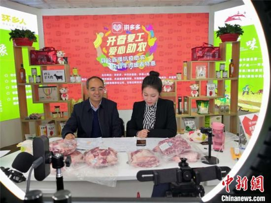 4月21日晚8时,甘肃庆阳市环县县长何英禅在网络直播间向网友推介环县羊肉。