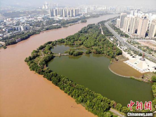 """2020年9月3日航拍黄河兰州段湿地公园现黄河""""鸳鸯锅""""。 高莹 摄"""