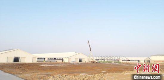 图为甘肃省武威市在建的工业园区。(资料图)武威市宣传部供图