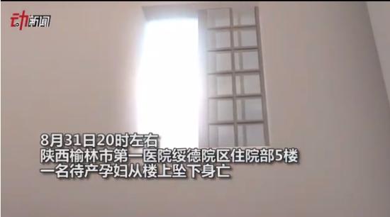 图片来自于视频截图