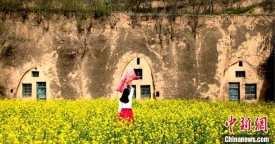"""图为镇原县一院废弃窑洞,成为市民踏春赏花拍照的""""背景图""""。"""