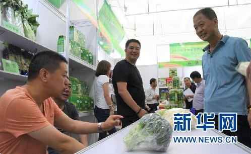 来自甘肃定西渭源县参展企业的工作人员介绍高原夏菜