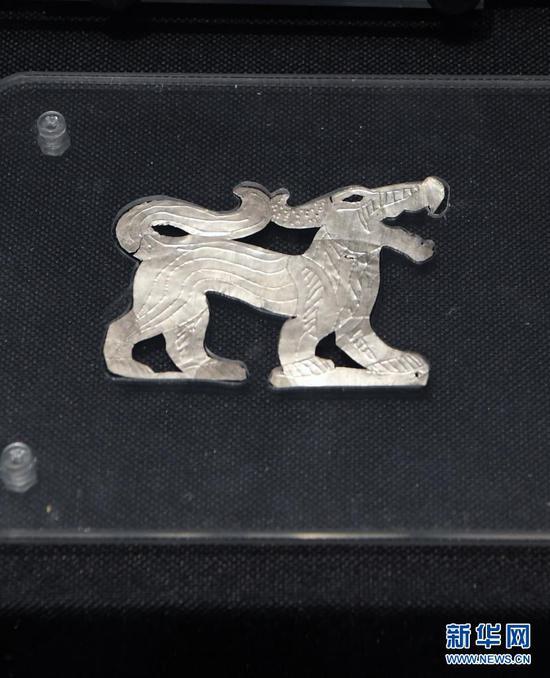 出土于马家塬西戎墓葬的狼形银箔车舆饰(5月18日摄)。新华社记者 范培珅 摄