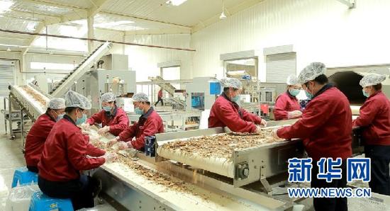 陇西一中药材加工生产车间。甘肃省农业农村厅供图