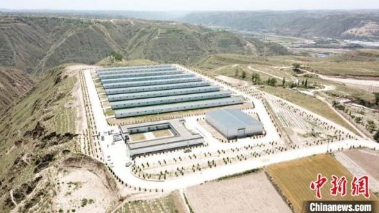 甘肃庆阳中盛农牧建设的现代化肉羊养殖场
