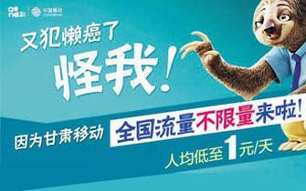 您已登机,欢迎打开手机!中国移动给你提供最强大网络支撑