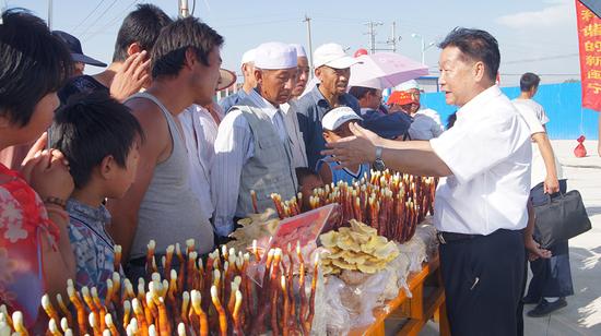 支援宁夏扶贫期间,林占熺在当地推广菌草栽培食用菇技术。