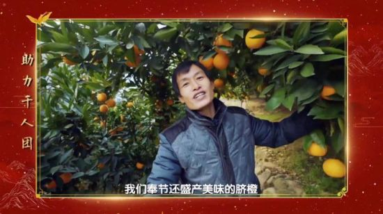 奉节果农代表易守财在自家脐橙园与活动现场连线。 王婷婷 摄