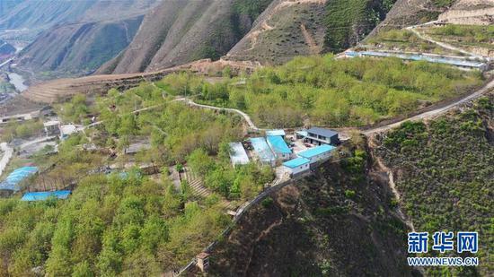 这是王磊经营的种养殖农民专业合作社基地(无人机照片,4月23日摄)。 新华社记者 陈斌 摄
