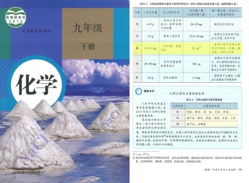 义务教育教科书初三《化学》九年级下册第99页