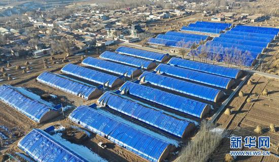 12月21日拍摄的临夏县一农业园区的温室大棚(无人机照片)。新华社发(史有东 摄)