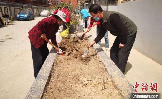 居民将私有菜园变为公共花园。