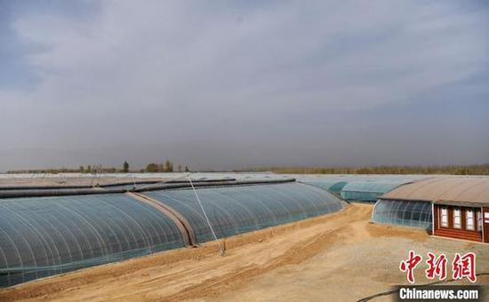 2020年4月底,记者走访了甘肃省张掖市甘州区党寨镇陈寨村的智慧温室大棚。