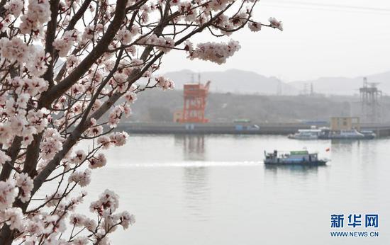 3月28日,轮船在黄河刘家峡水库内行驶。新华社发(史有东 摄)