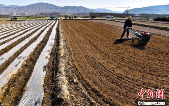图为农户使用农用机械铺设地膜