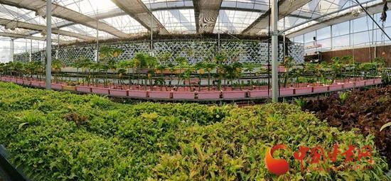 榆中县康源现代农业示范园展示厅
