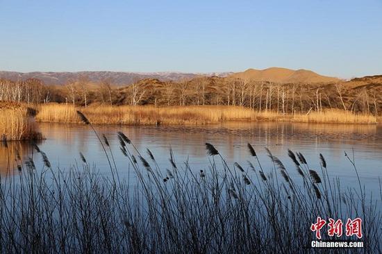 结冰的湖面与周围的白杨、芦苇、爬地柏交相辉映,成初冬边境线上一道靓丽的风景线。 杨东东 摄