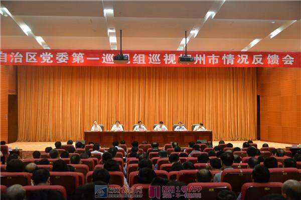巡视组向柳州市反馈:党的领导弱化、建设缺失等问题